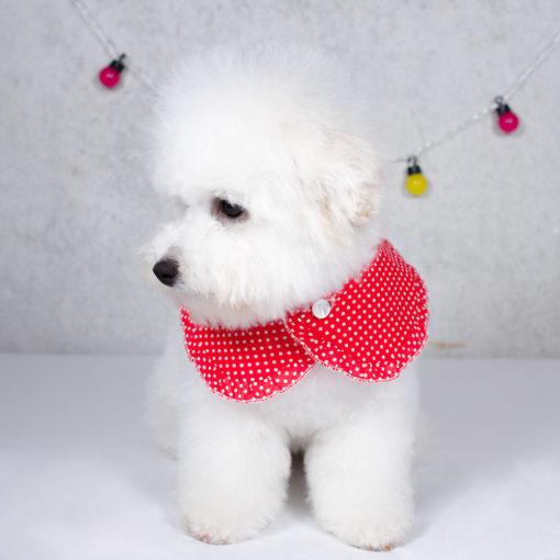 cuello-dotty-red